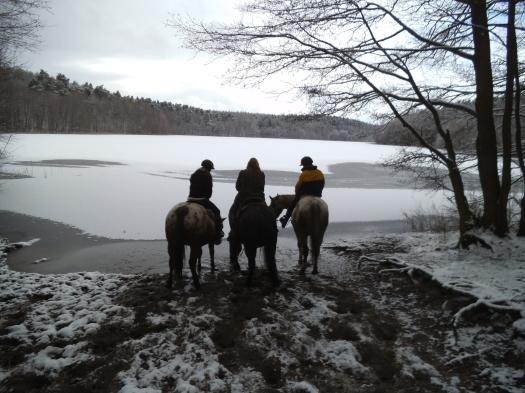 drei am wintersee