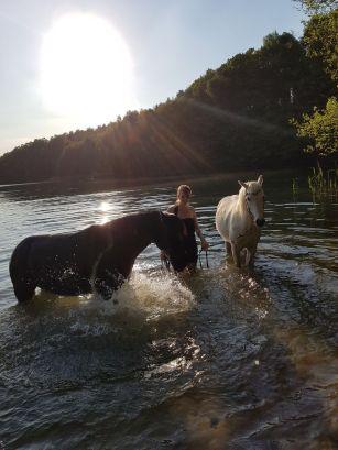 mit 2 Pferden im See